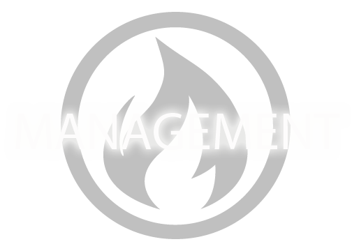 FIRE ENTERTAINMENT TALENT MANAGEMENT